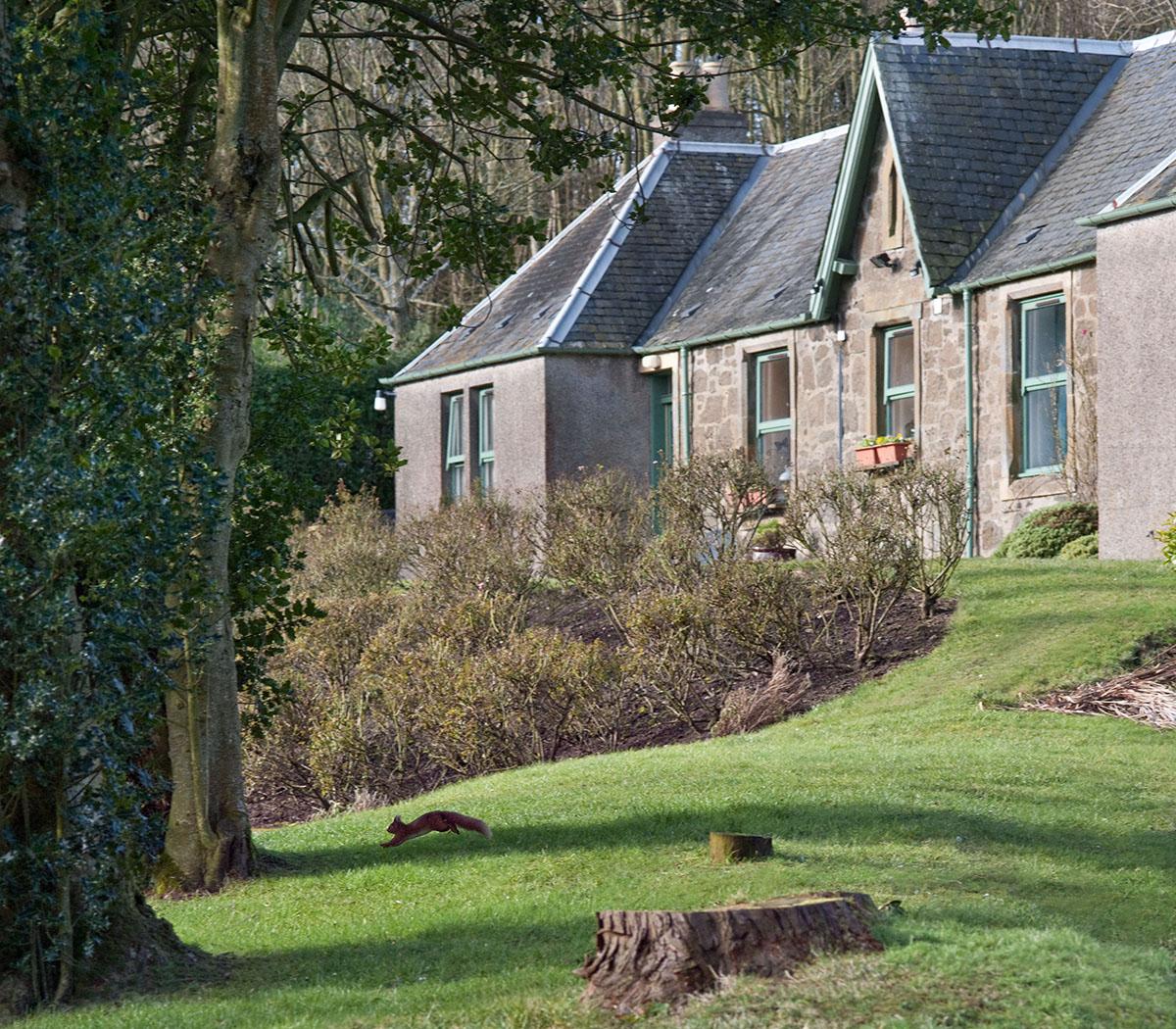 Teasses-cottage-rental-estate-