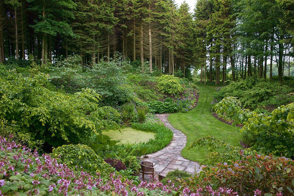 teasses-woodland-garden-open-fife-ceres ©Andrea Jones