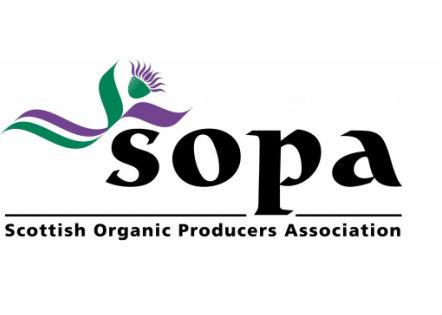Farm-teasses-organic-beef-Scotland