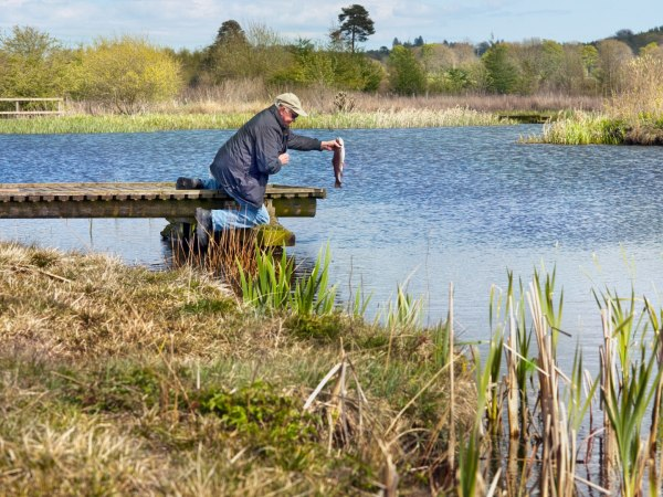 fife-fishing-game-trout-sporting-estate