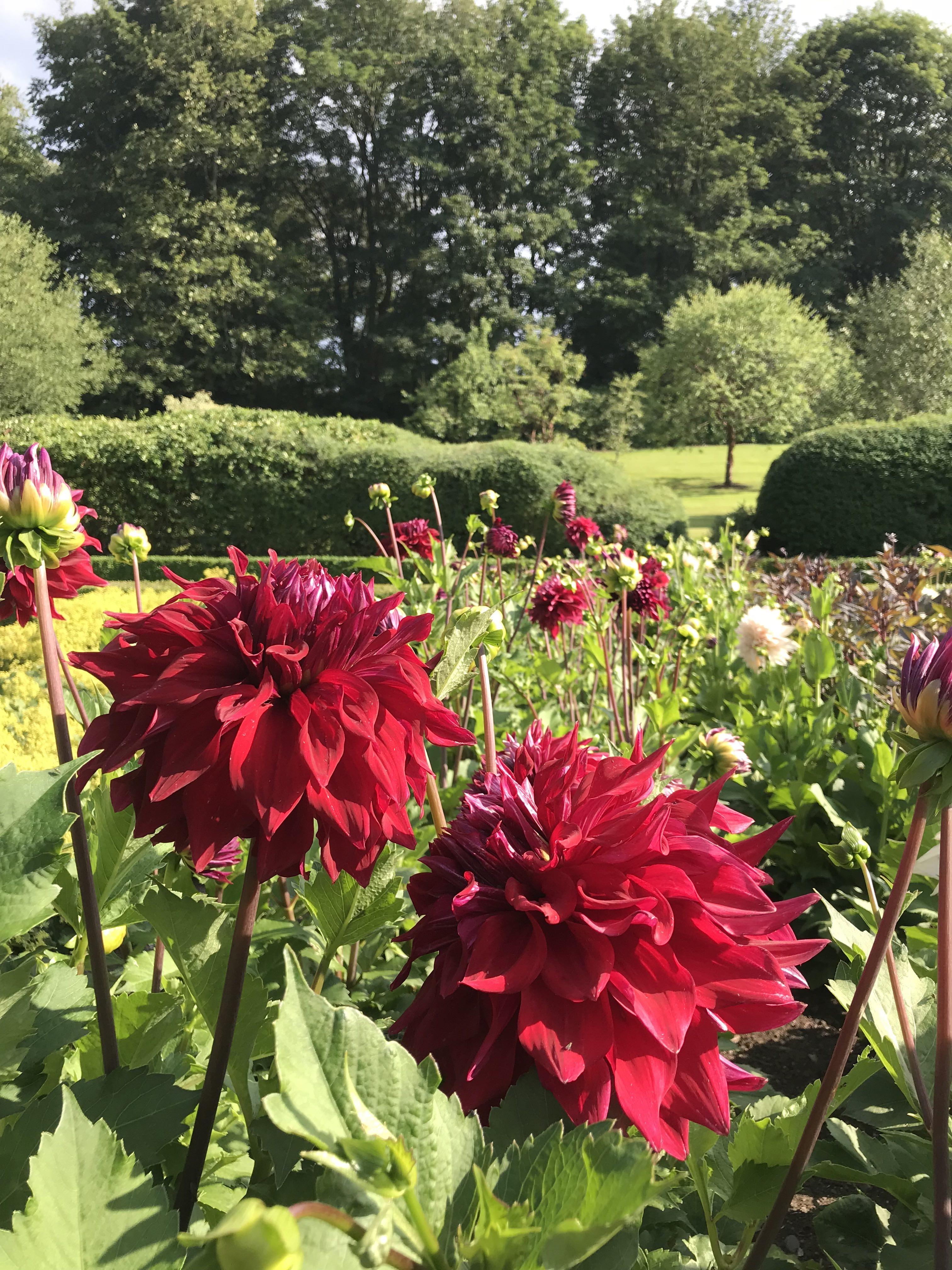 Teasses, Walled Garden, Teasses Estate