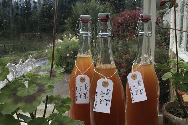 Teasses, walled garden, apple, juice