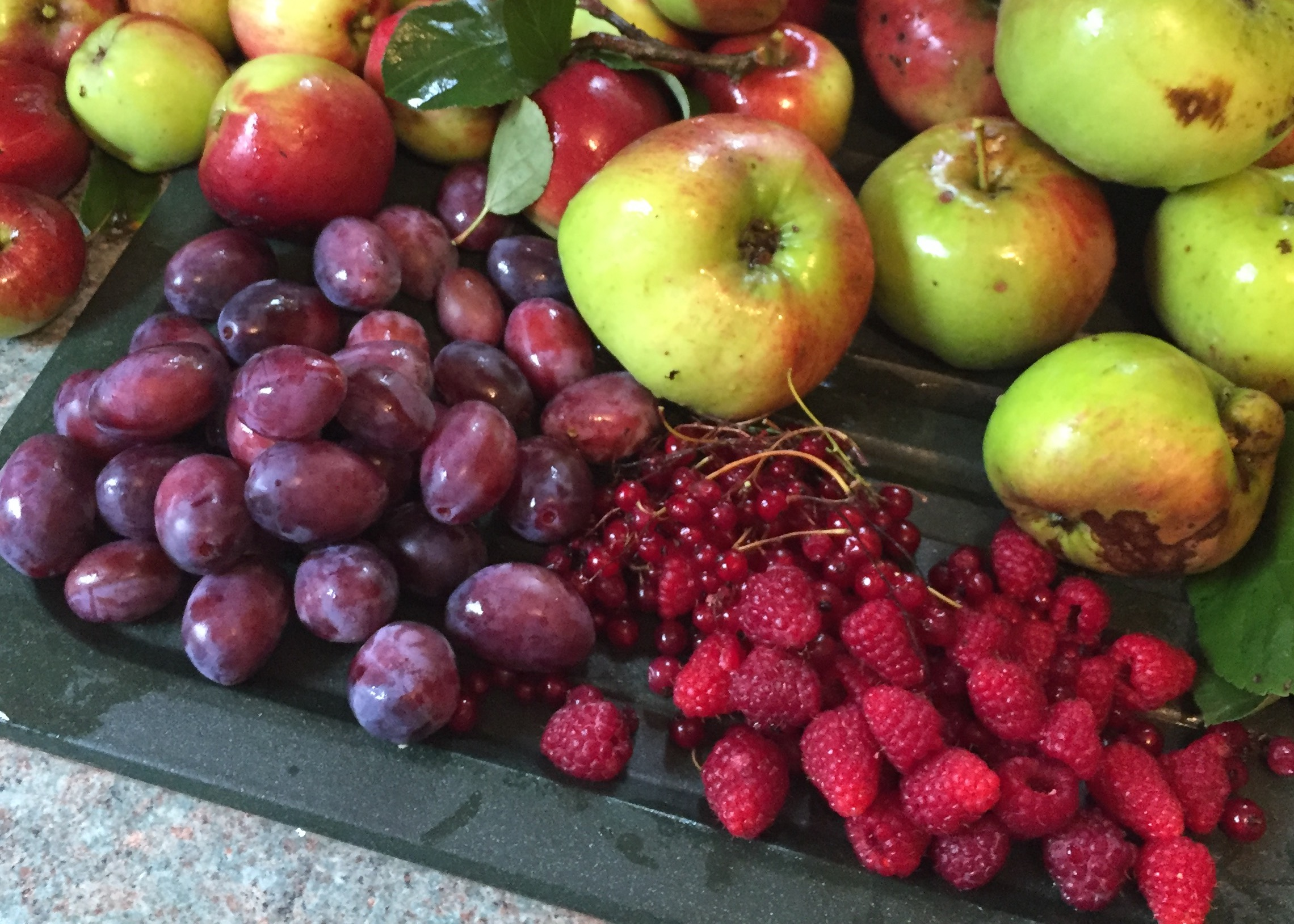Teasses; Estate; Walled; Garden; Organic; Fruit